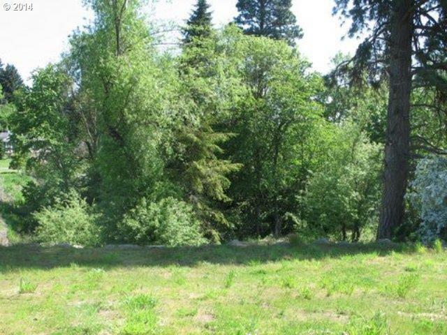 Arrowhead Ave 1, Hood River, OR - USA (photo 2)