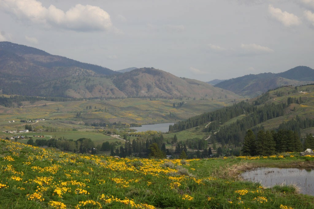 54 Mule Deer Trail, Winthrop, WA - USA (photo 5)