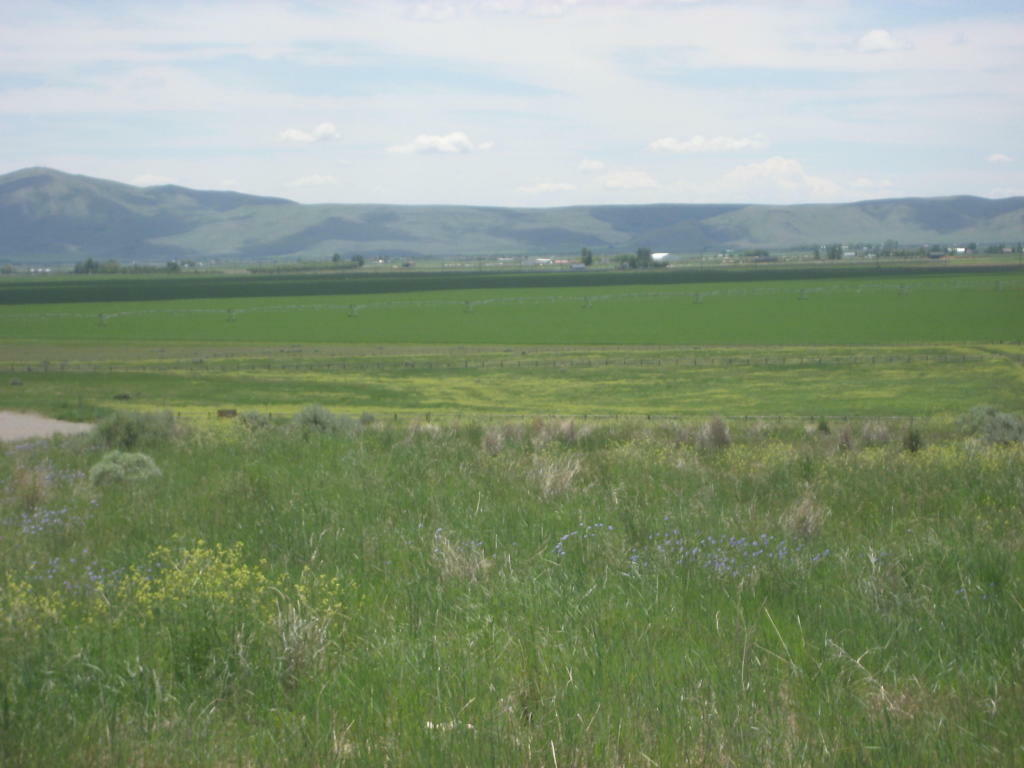 110 Sterling Dr, Bellevue, ID - USA (photo 3)