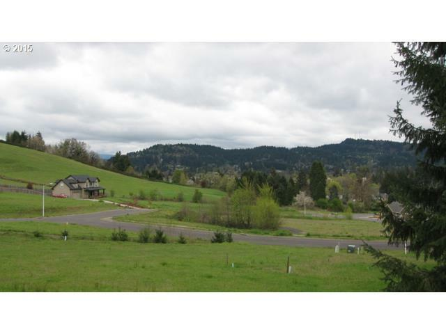 700 N M St 41, Cottage Grove, OR - USA (photo 4)