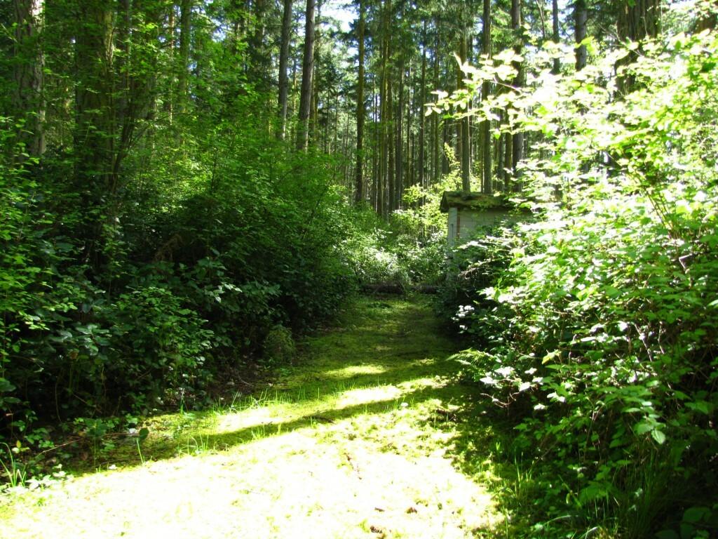 9999 Schwartz Rd, Nordland, WA - USA (photo 3)