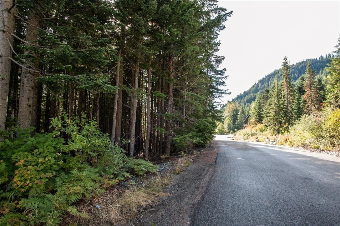 1 Innsbruck Dr Lot77, Snoqualmie Pass, WA - USA (photo 2)