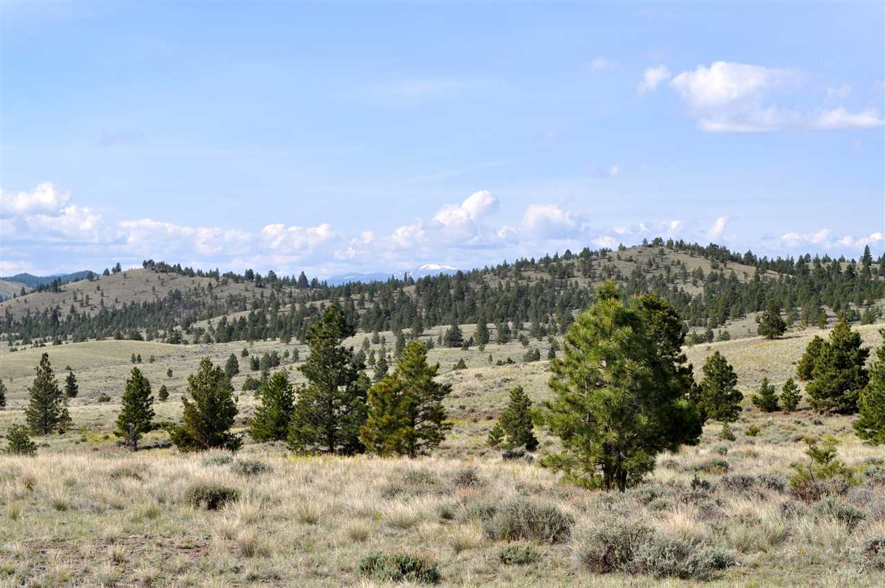 Tbd 2 Woodland Hills Road, Helena, MT - USA (photo 3)