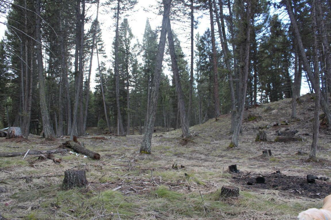 175 Moose Lane, Seeley Lake, MT - USA (photo 5)