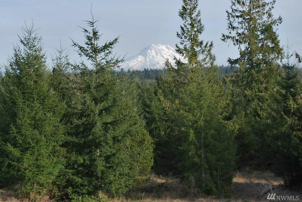 10 Cottonwood Dr, Grapeview, WA - USA (photo 1)