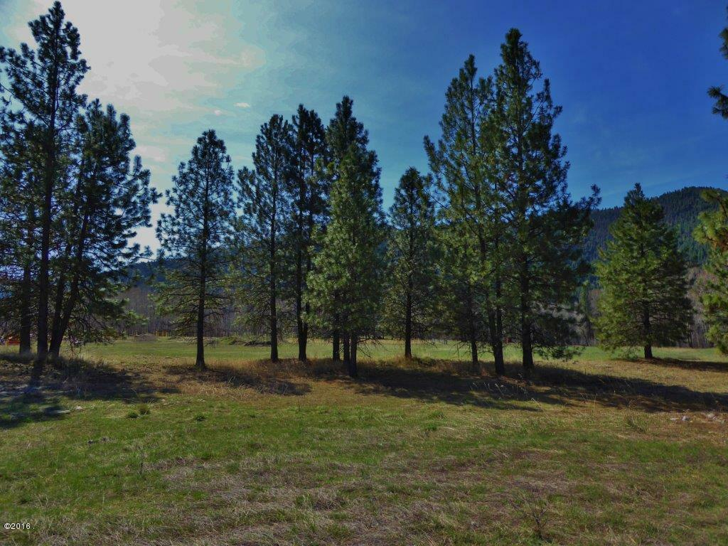 Lot 49 Turah Meadows, Clinton, MT - USA (photo 4)