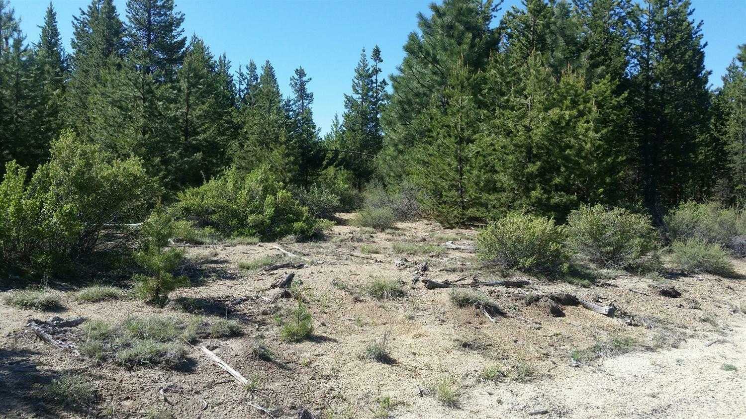 13 Lot Gracies Road, Gilchrist, OR - USA (photo 1)