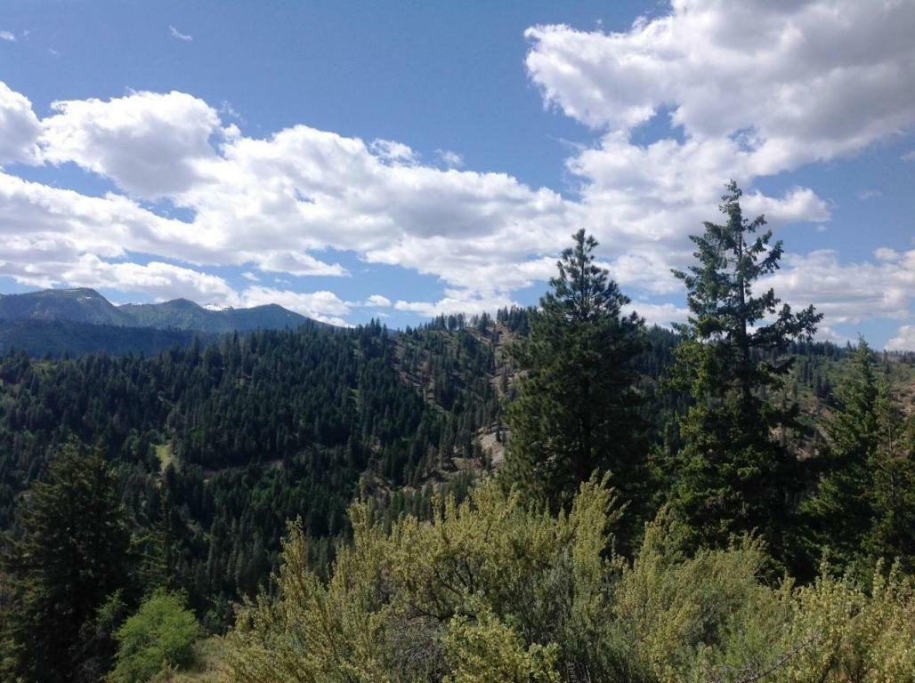 Nna Timber Ridge Canyon Rd, Leavenworth, WA - USA (photo 5)
