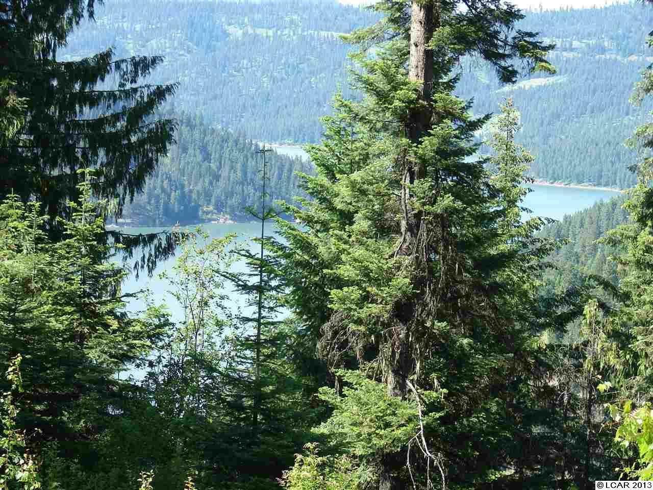Tbd  Lot 18 Moose Ridge Drive, Orofino, ID - USA (photo 4)