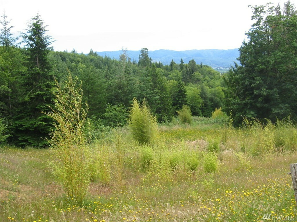 56 Fernhill Lot 2, Cathlamet, WA - USA (photo 5)