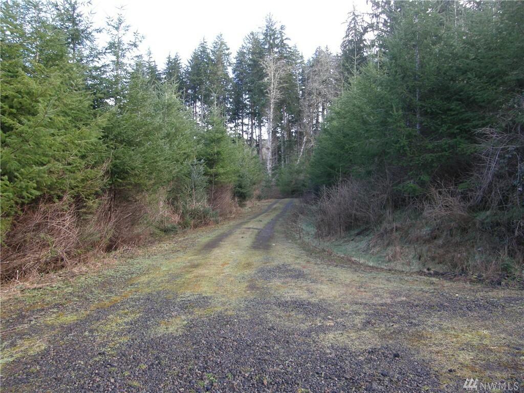 0 State Route 107, Montesano, WA - USA (photo 2)