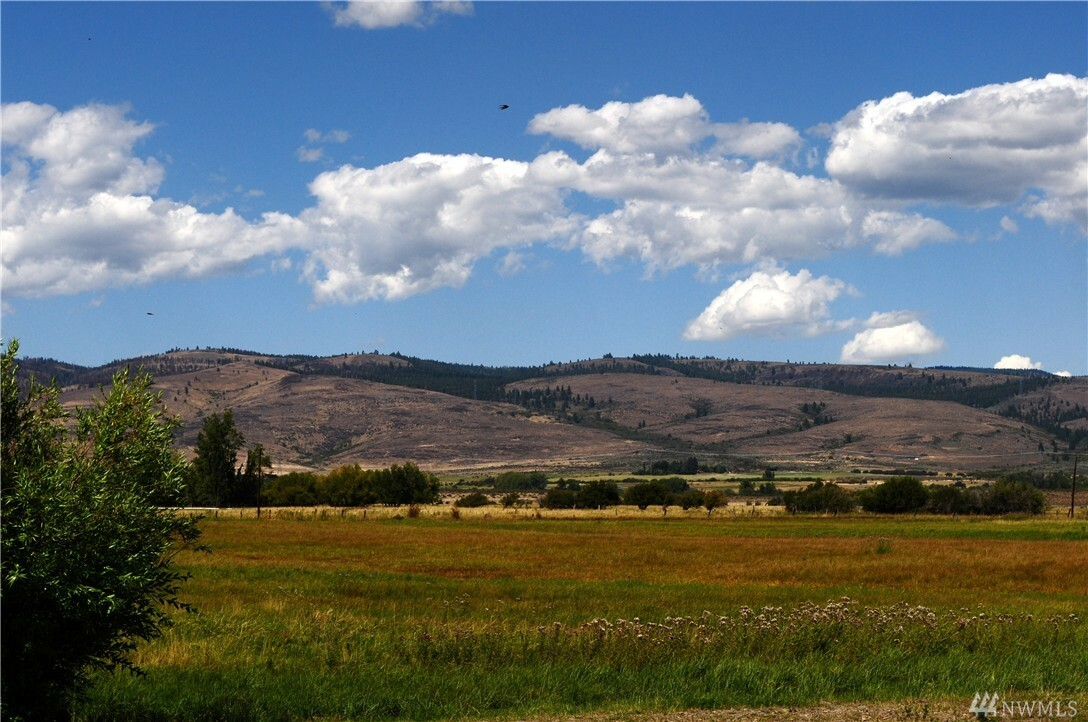 7490 Naneum Rd, Ellensburg, WA - USA (photo 5)