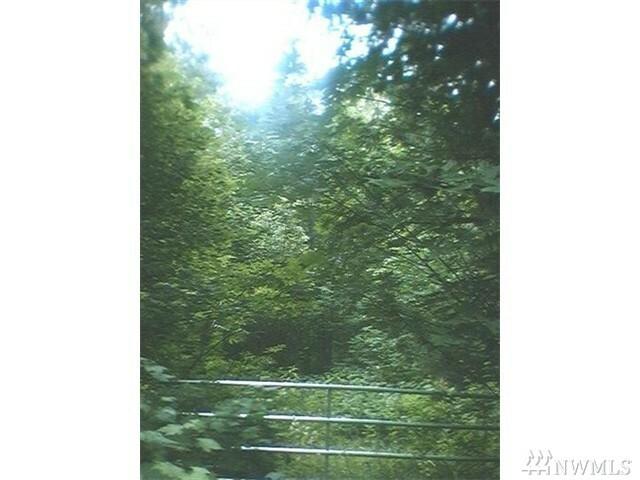 8553 Silver Lake Rd, Maple Falls, WA - USA (photo 3)