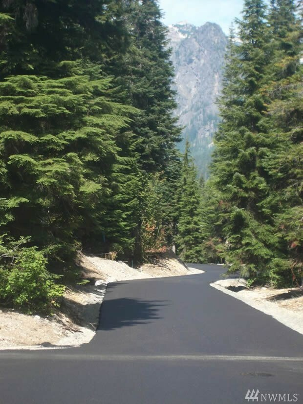 28 Cedar Lane, Snoqualmie Pass, WA - USA (photo 1)