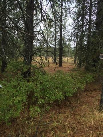 7060 W Tesemini Dr, Spirit Lake, ID - USA (photo 1)