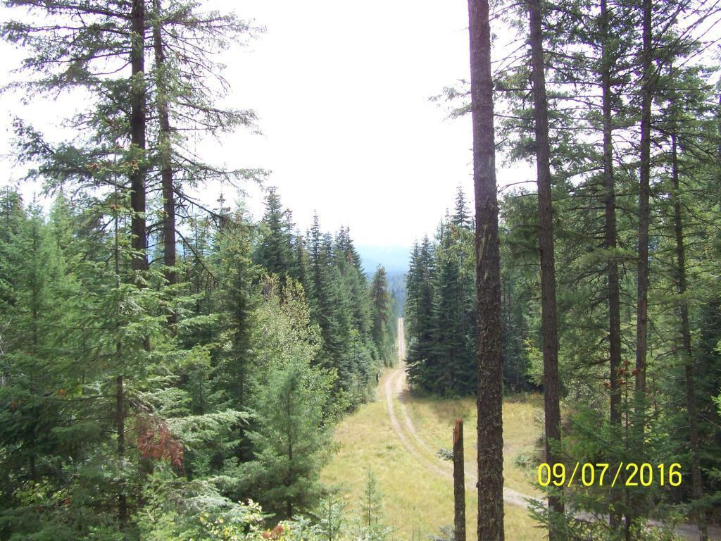 17291 Perimiter Road, Athol, ID - USA (photo 5)