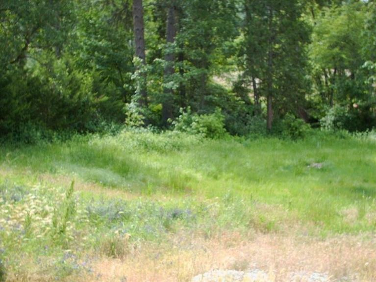 105 Sunnybrooke Court, Rogue River, OR - USA (photo 1)
