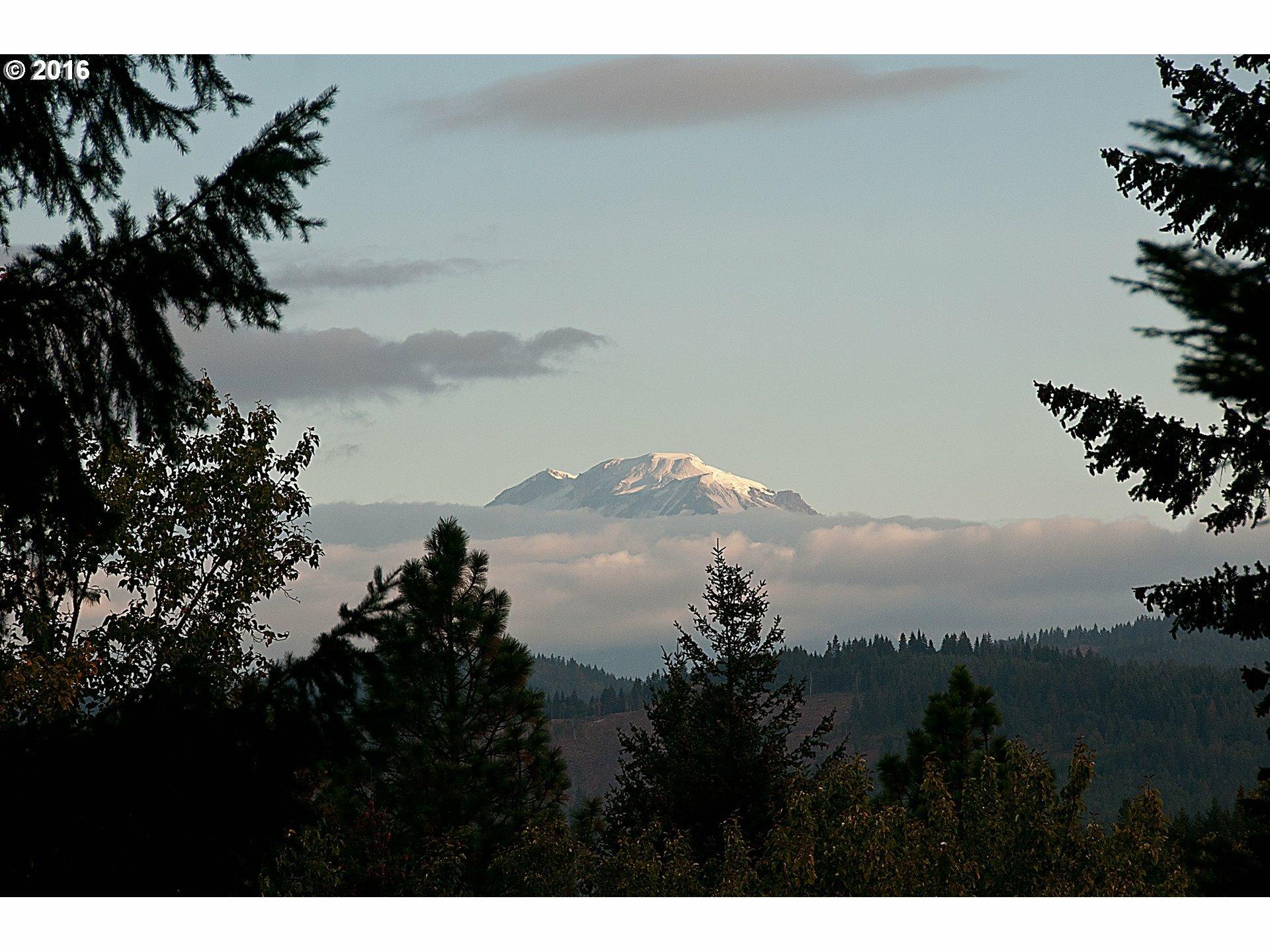 12 Husum Hills Dr, White Salmon, WA - USA (photo 3)