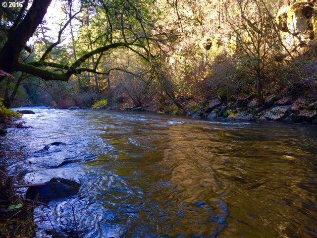 Fordyce Rd, White Salmon, WA - USA (photo 1)