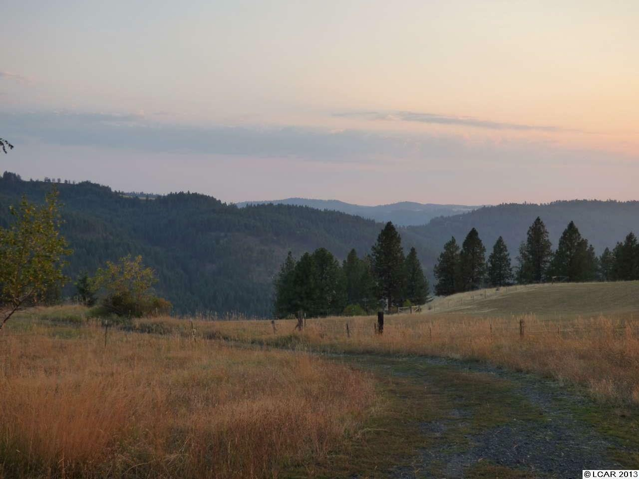 7481 Upper Fords Creek Road, Orofino, ID - USA (photo 3)