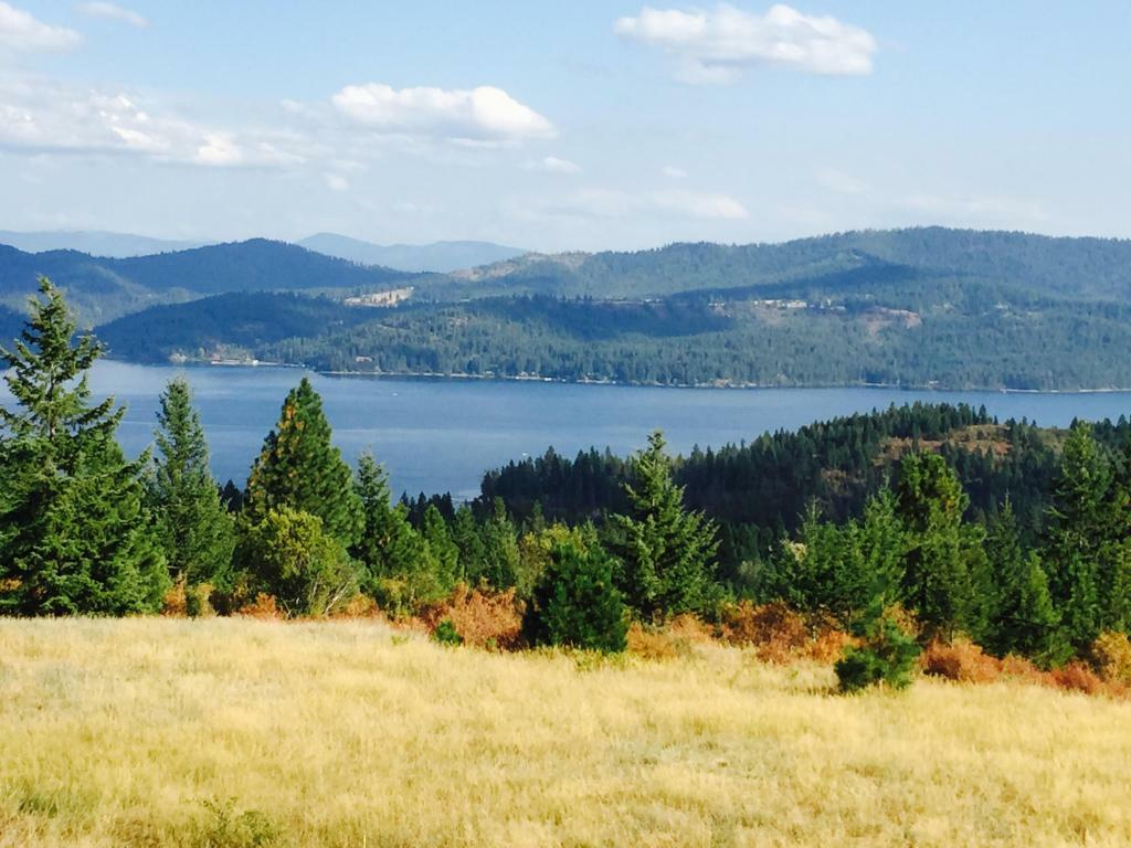 16037 S Loffs Bay Road, Coeur D'alene, ID - USA (photo 1)