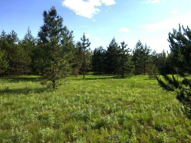 Nna E Scout Trail, Athol, ID - USA (photo 1)