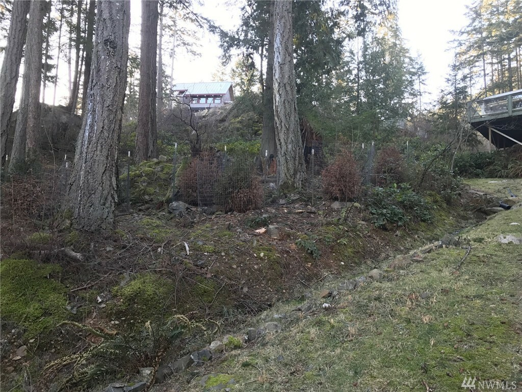 1146 Clark Cir, Lummi Island, WA - USA (photo 5)