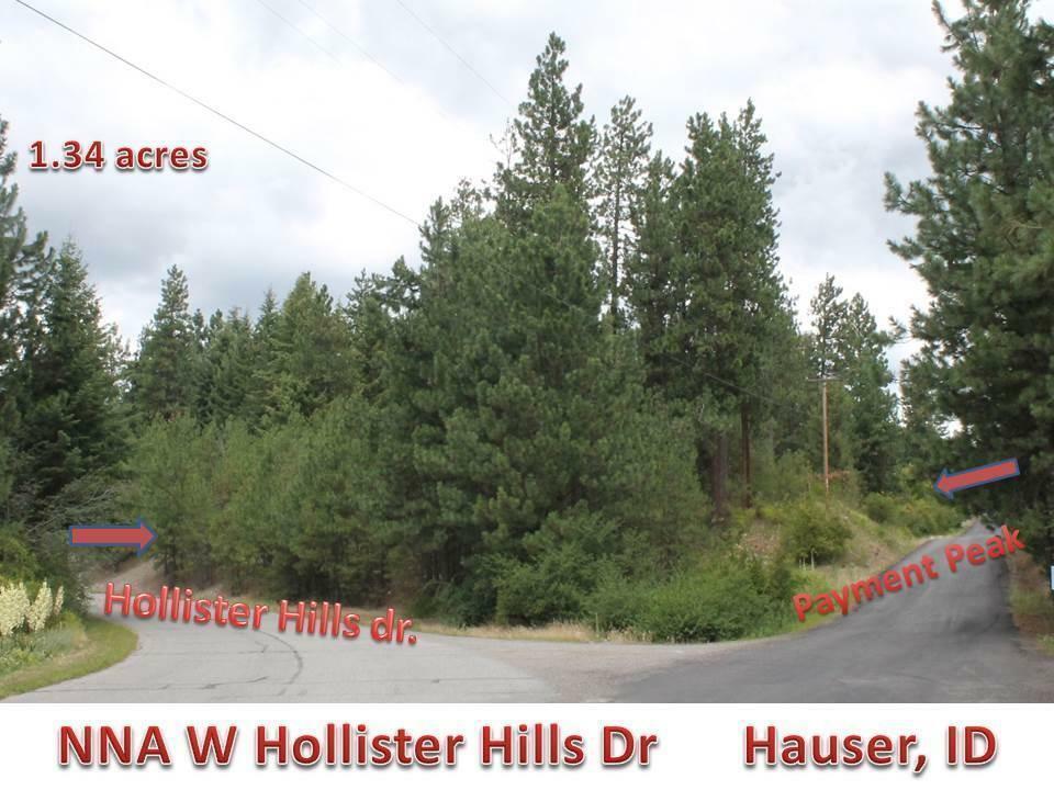 Nna Hollister Hills Dr, Hauser, ID - USA (photo 4)