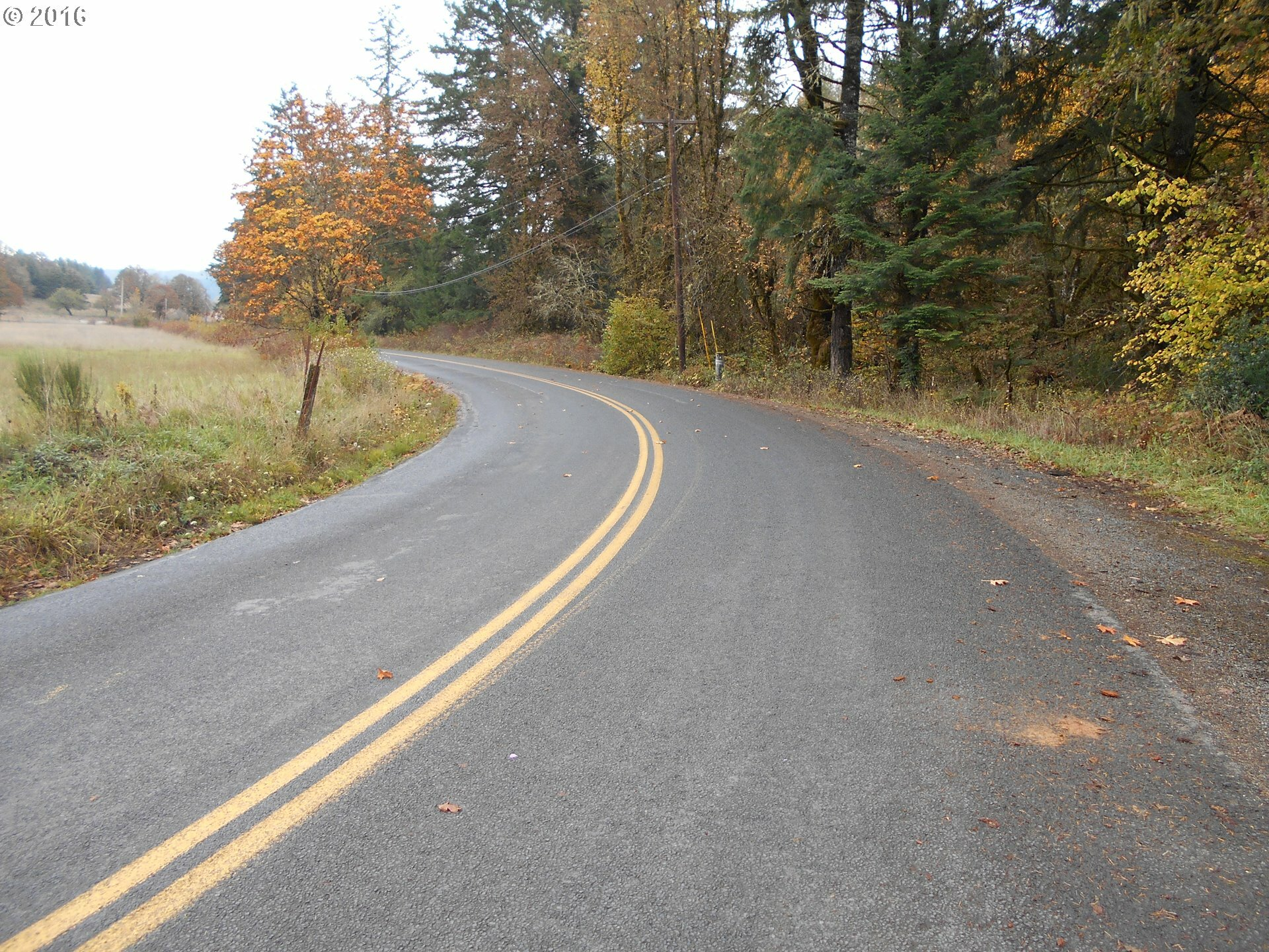 39525 Sw Fort Hill Rd, Willamina, OR - USA (photo 5)
