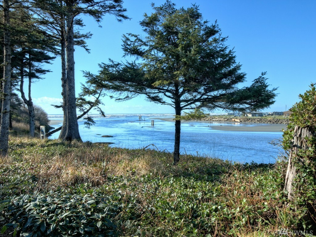 6 Diamond Dr, Pacific Beach, WA - USA (photo 3)