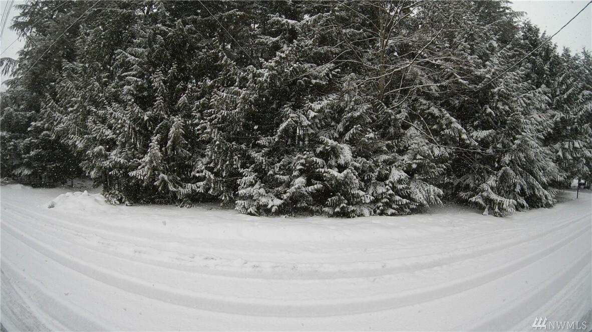 8332 Holly Lane, Maple Falls, WA - USA (photo 1)