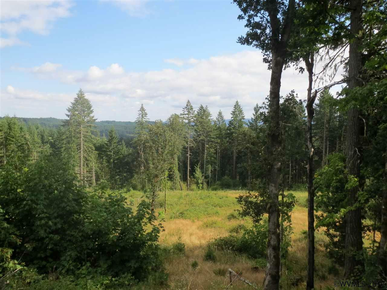 18700 Sw Indian Creek Rd, Willamina, OR - USA (photo 1)