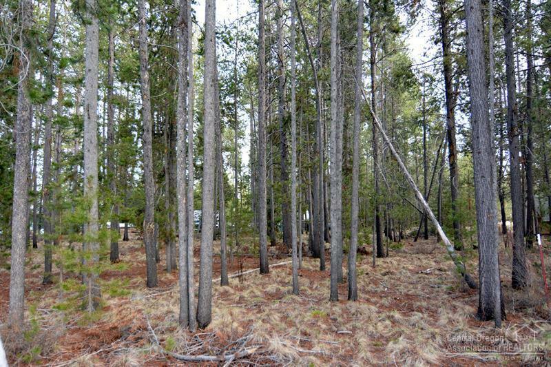 16271 Leona Lane, La Pine, OR - USA (photo 3)
