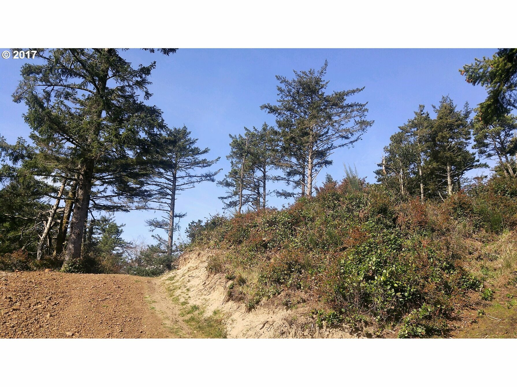 32480 Pine Road, Pacific City, OR - USA (photo 2)