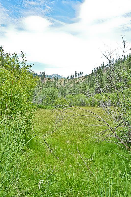 Tbd Valley View Way, Lowman, ID - USA (photo 3)