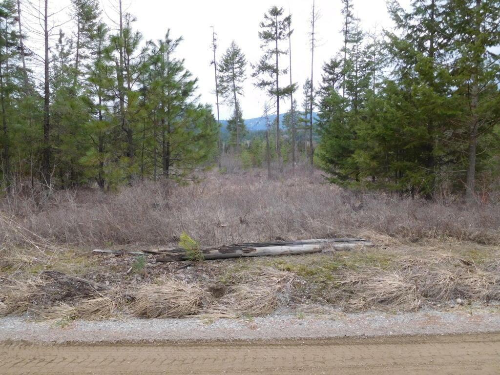 2800 Hall Creek Rd, Inchelium, WA - USA (photo 1)