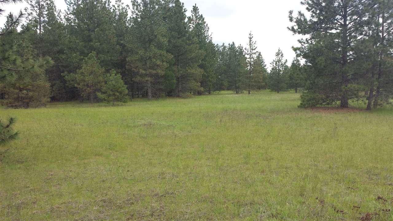 00 Oregon Rd, Elk, WA - USA (photo 3)