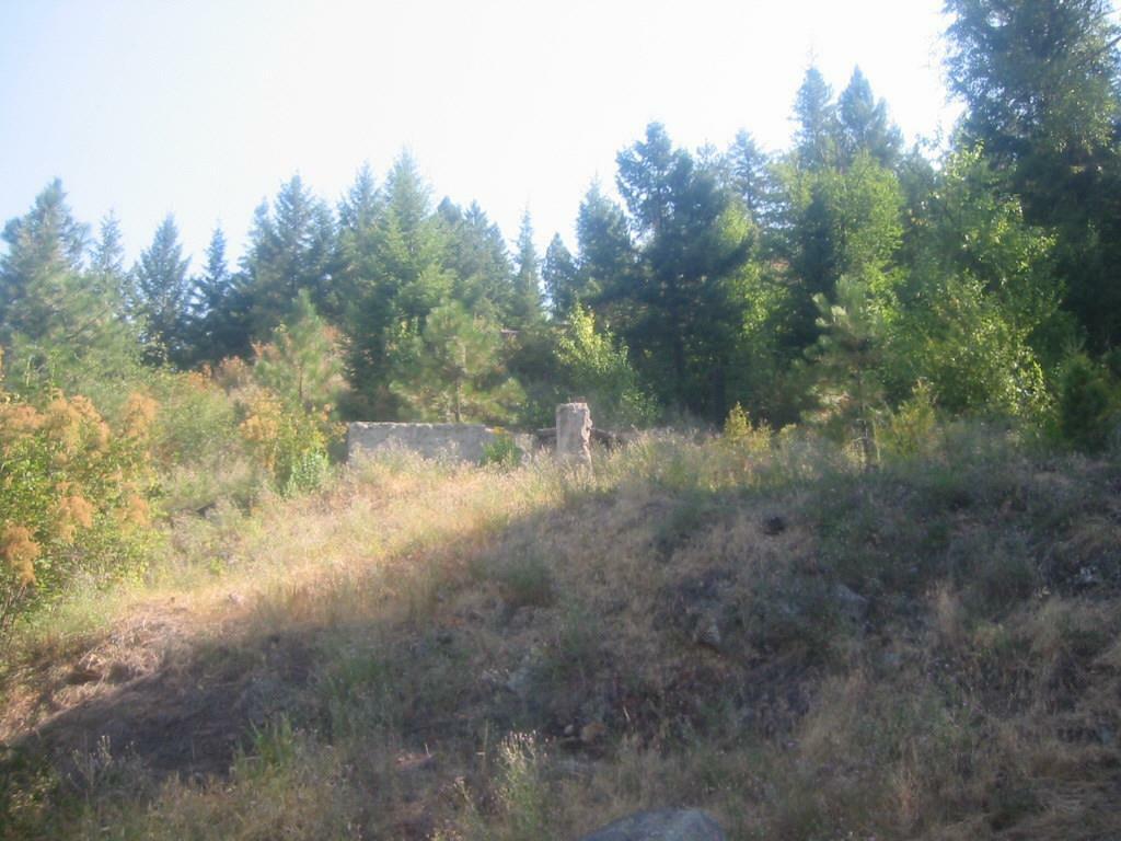 X Suther Ln, Elk, WA - USA (photo 4)