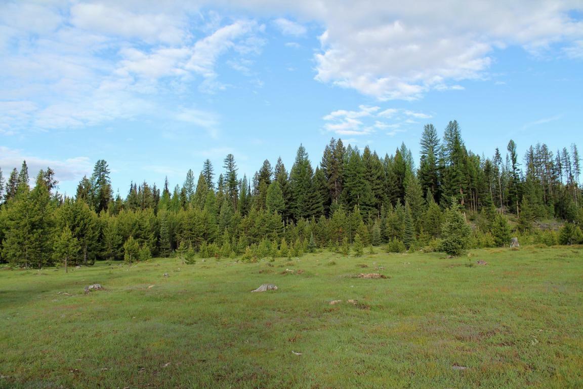 Tbd Boy Scout Road, Seeley Lake, MT - USA (photo 4)