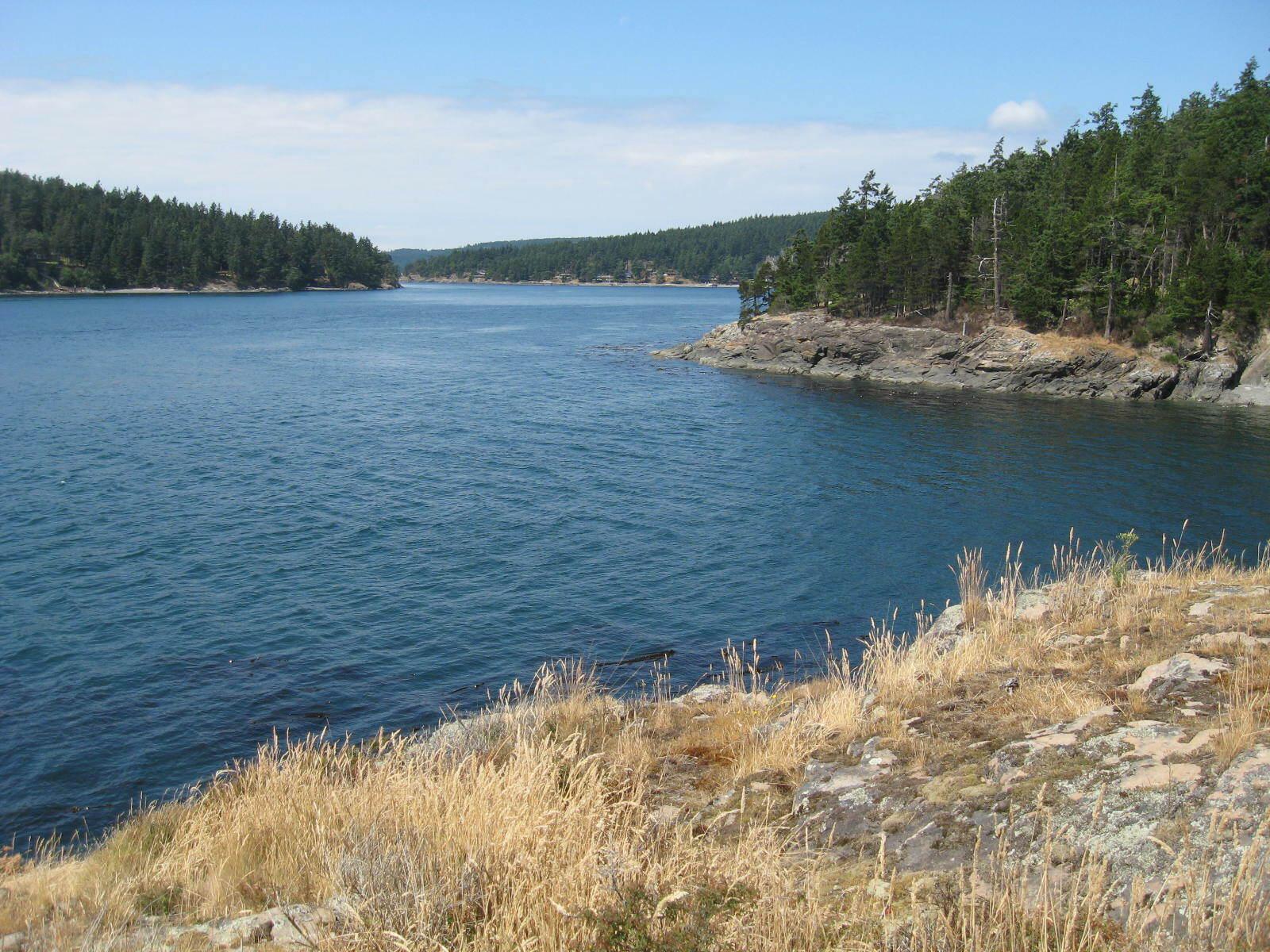 879 deer point road, orcas island (photo 2)