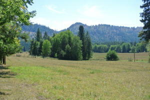 2059 Dry Creek Rd, Chewelah, WA - USA (photo 3)
