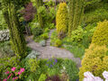 Back yard & garden