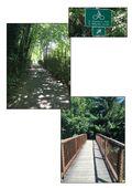 Magnolia Connector Trail